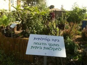 מתקני הדגמה לחקלאות ביתית שנבנו בשיתוף עם פעילי הגינה הקהילתית במוזיאון הטבע בירושלים