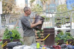 סדנאת גינון ורטיקלי בגינת נוה שאנן