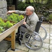אדנית מוגבהת מאפשרת לאדם על כיסא גלגלים לעבוד בנוחות יחסית על הערוגה
